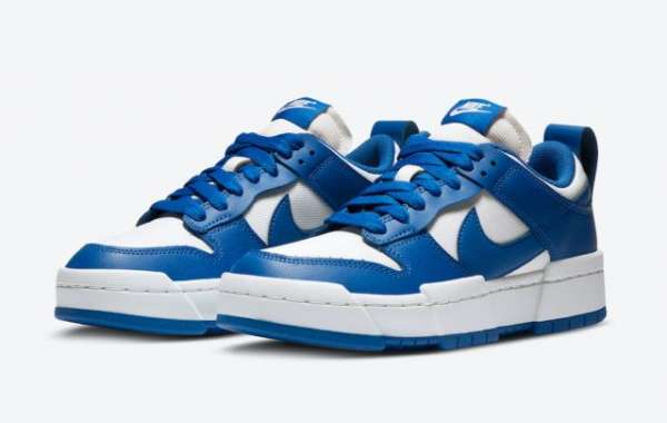 Do you like the Nike Dunk Low Disrupt